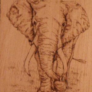 Elefante pirograbado