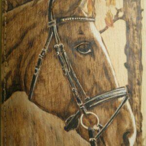 Funda para libretas pirograbada con la imagen de un caballo.